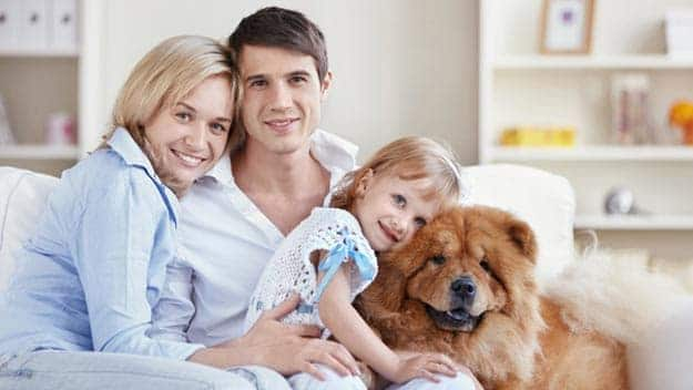 Wills & Trusts dog-young-family Direct Wills Oxted